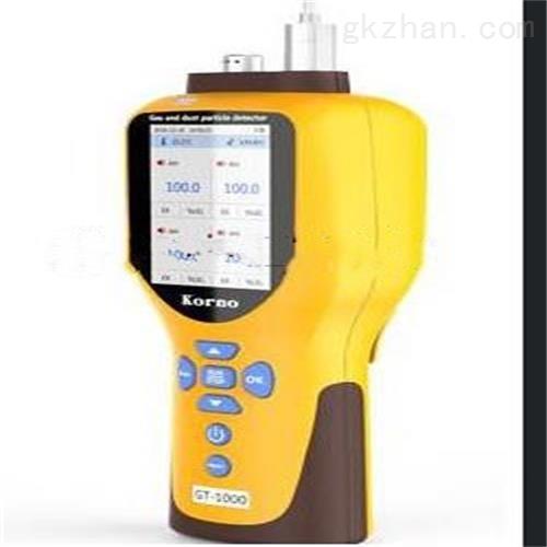 便携式二合一气体检测仪 仪表