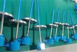 WZPK2-141安徽天康防爆型双支铂热电阻