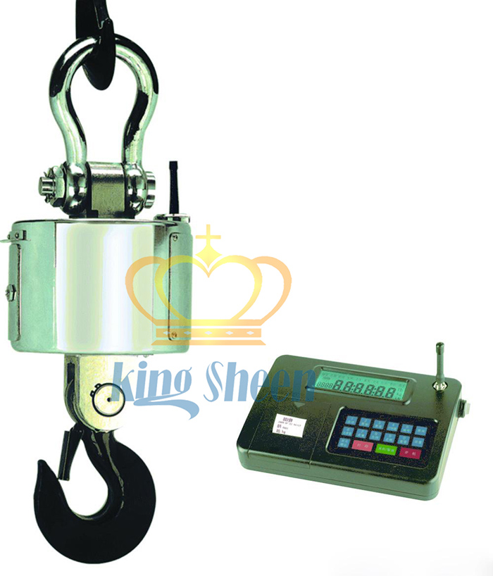 10T高安全性无线电子吊秤